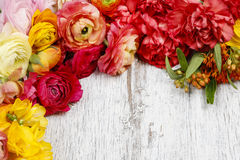 Spring flowers on wooden background Stock Image