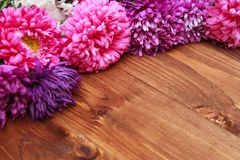 Spring flowers on wooden background Royalty Free Stock Photo