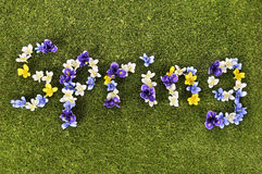 Spring flowers. The word Spring written with flowers on a grass lawn.  Space for copy Stock Image