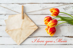 Spring flowers for your mom Royalty Free Stock Images