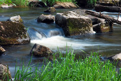 Spring flowing stream Stock Photography