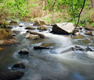 Spring flowing stream Royalty Free Stock Photos