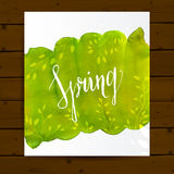 Spring flyer layout with green paint stain and Royalty Free Stock Photography