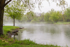 Spring fog over the lake Stock Photo