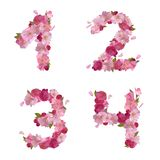 Spring font from cherry flowers figures 1,2,3,4 Royalty Free Stock Images