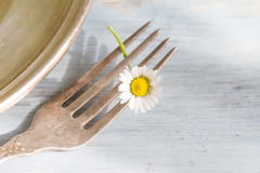 Spring food abstract background with daisy on the fork Royalty Free Stock Image