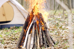 In the spring forest a tent with a fire a Stock Photos