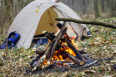 In the spring forest a tent with a fire a Royalty Free Stock Photo