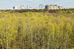Spring forest and urban residential district Stock Photos