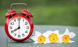 Spring forward, daylight savings concept. Daylight savings, spring forward concept - web banner of an alarm clock and flowers royalty free stock photos