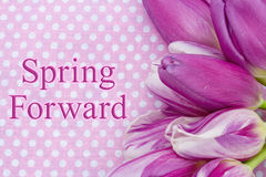 Spring Forward message. A bouquet of purple tulips on pink polka dots with text Spring Forward Royalty Free Stock Image