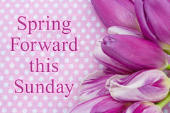 Spring Forward message. A bouquet of purple tulips on pink polka dots with text Spring Forward this Sunday stock photos