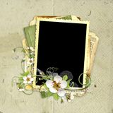 Spring frame with apple tree flowers Royalty Free Stock Image