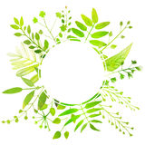 Spring frame with bright green leaves Stock Photos