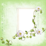 Spring frame with brilliant rain Stock Photography