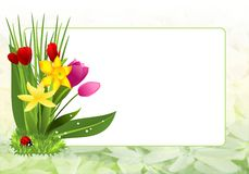 Spring frame, cdr vector Stock Images