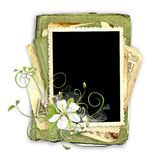 Spring frame with cherry flowers Royalty Free Stock Images