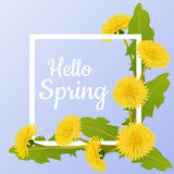 Spring frame with dandelion flower and leaf. Spring frame with yellow dandelion flower and leaf, on blue background. Hello spring message Royalty Free Stock Photos