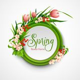 Spring frame with flowers. Vector illustration Royalty Free Stock Photography