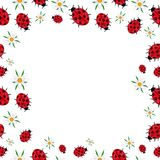 Spring frame of ladybugs and daisies royalty free illustration