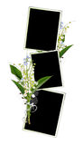 Spring frame with lily of the valley. On the white Stock Image