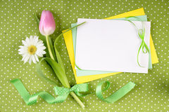 Spring frame for your greeting card with flowers Royalty Free Stock Photos