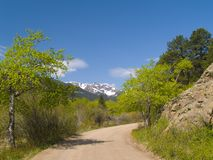 Spring Framing Mountain Road Stock Image