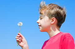 Spring freedom. Young boy blowing spring flower stock photo
