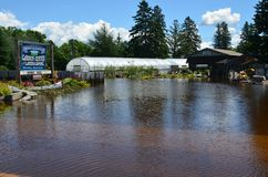 Spring Fresh Garden Center in Flood. Moose Lake, MN - June 22, 2012 - Spring Fresh Garden Center on Arrowhead Lane inundated by flood waters Stock Photography