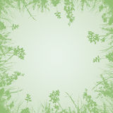 Green branches background. Spring fresh green branches growing from all around on a pastel light green background Royalty Free Illustration