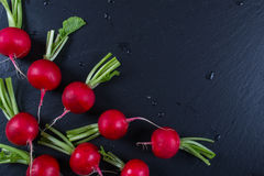 Spring fresh radishes background on the black slate board. Top view Stock Photos