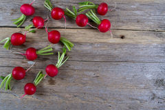 Spring fresh radishes background. On a old wooden background Royalty Free Stock Image