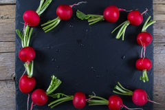 Spring fresh radishes frame  on the black slate board. Top view Royalty Free Stock Photo