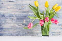 Spring fresh tulips yellow and red bouquet on rustic shabby blue wooden background. stock images