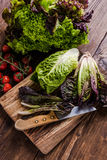 Spring fresh vegetable on wooden table, clean eating Royalty Free Stock Images
