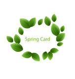 Spring freshness card made in eco green leaves, isolated Stock Photos