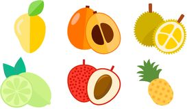 Spring fruit icon. Six spring fruit icon loquat, durian, pineapple, mange, lichee, lime Royalty Free Stock Image