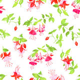 Spring fuchsia watercolor seamless vector print Royalty Free Stock Image