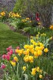 Spring Gardeb Royalty Free Stock Photography