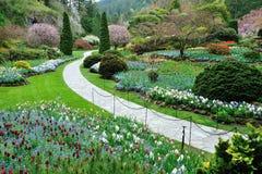 Spring garden Stock Images