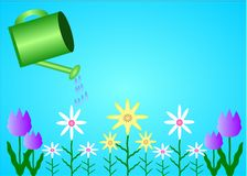 Spring Garden. An illustration of a watering can and some spring flowers Royalty Free Stock Photography