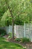 Spring Garden. Backyard in Spring royalty free stock photos
