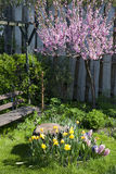 Spring in garden. Flower garden with a wooden bench Royalty Free Stock Photography