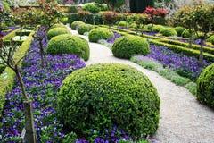 Spring garden Royalty Free Stock Photos