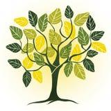 Spring garden - abstract tree. 2d vector Royalty Free Stock Photos