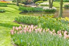 Spring Garden Armony Stock Image