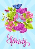 Spring garden background or greeting card. Natural illustration with blossom flower, robin birdie and butterfly.  Royalty Free Stock Images