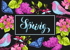 Spring garden background or greeting card. Natural illustration with blossom flower, robin birdie and butterfly Royalty Free Stock Images