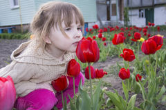Spring in the garden of a beautiful little girl sitting and smel Stock Photos