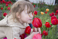 Spring in the garden of a beautiful little girl sitting and smel Royalty Free Stock Photo